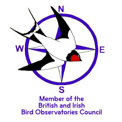 https://flamboroughbirdobs.org.uk/wp-content/uploads/2020/08/BOC-t.png